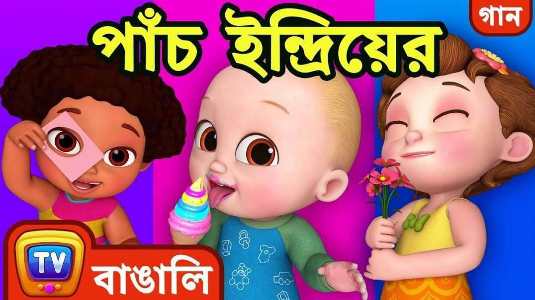 পাঁচ ইন্দ্রিয়ের গান – মানুষের ইন্দ্রিয় (Five Senses Song) Cartoon Bangla