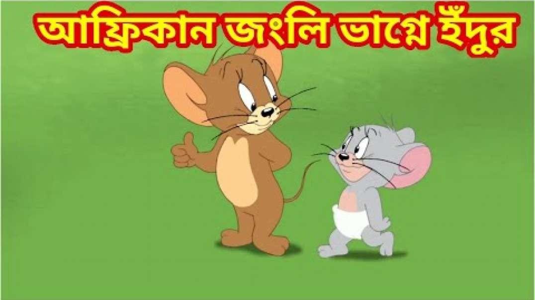 Tom and jerry bangla আফ্রিকান জংলি ভাগ্নে ইঁদুর