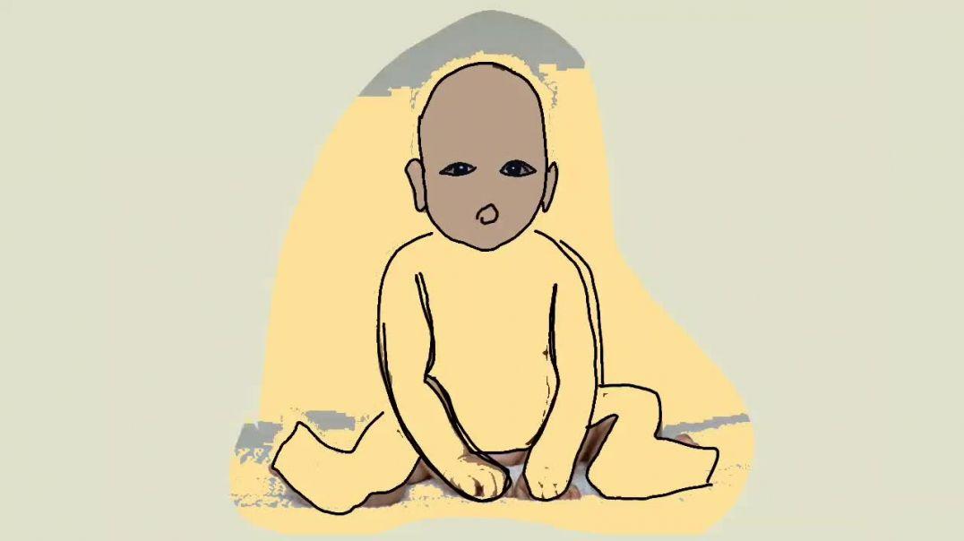 আতা গাছে তোতা পাখি ডালিম গাছে মৌ কবিতা আবৃত্তি